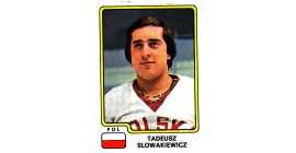 1979 PANINI #119-T. Slowakiewicz