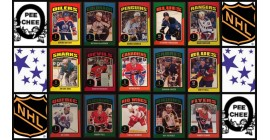 2014 O-Pee-Chee NHL Hockey Sticker Set of 100
