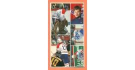 1987 Vachon Canadiens Panel #34 (8475)
