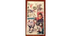 1987 Vachon Canadiens Panel #36 (5883)