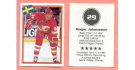 1993 Semic Sweden #29-Roger Johansson