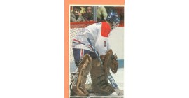 1987 Vachon Canadiens #84- Brian Hayward